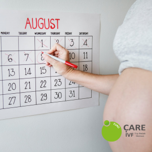 euroCARE IVF Pregnancy Calendar Sample for August